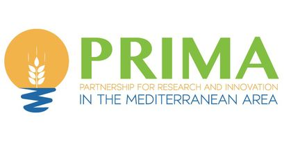 logo of the PRIMA funding initiative: a grain ear in front of the sun above the sea